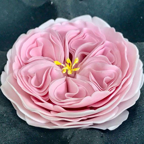 Utstikker Engelsk Rose, FMM