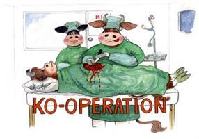 Ko-operation 7x9