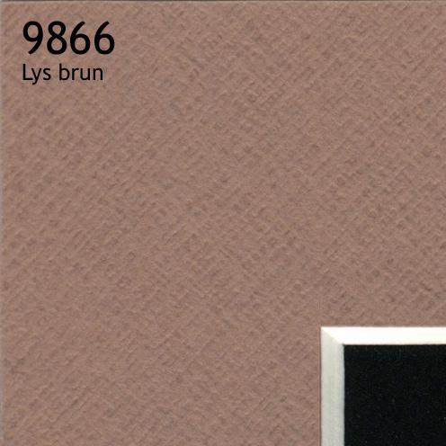 9866 lys brun