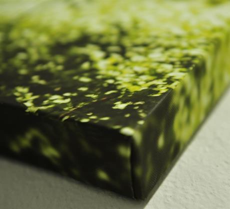 Lerret Canvas Greens Canson Infinity