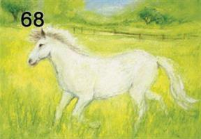 Hevonen-kortti