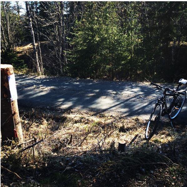 Sykkelpost i turorienteringa
