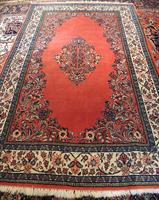 K10015 Saruk  253 x 150