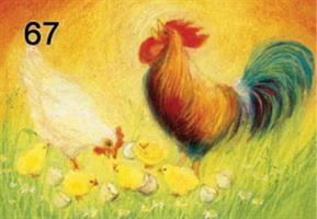 Kukko, kana ja tiput-kortti