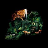 HEXVESSEL: IRON MARSH EP 12