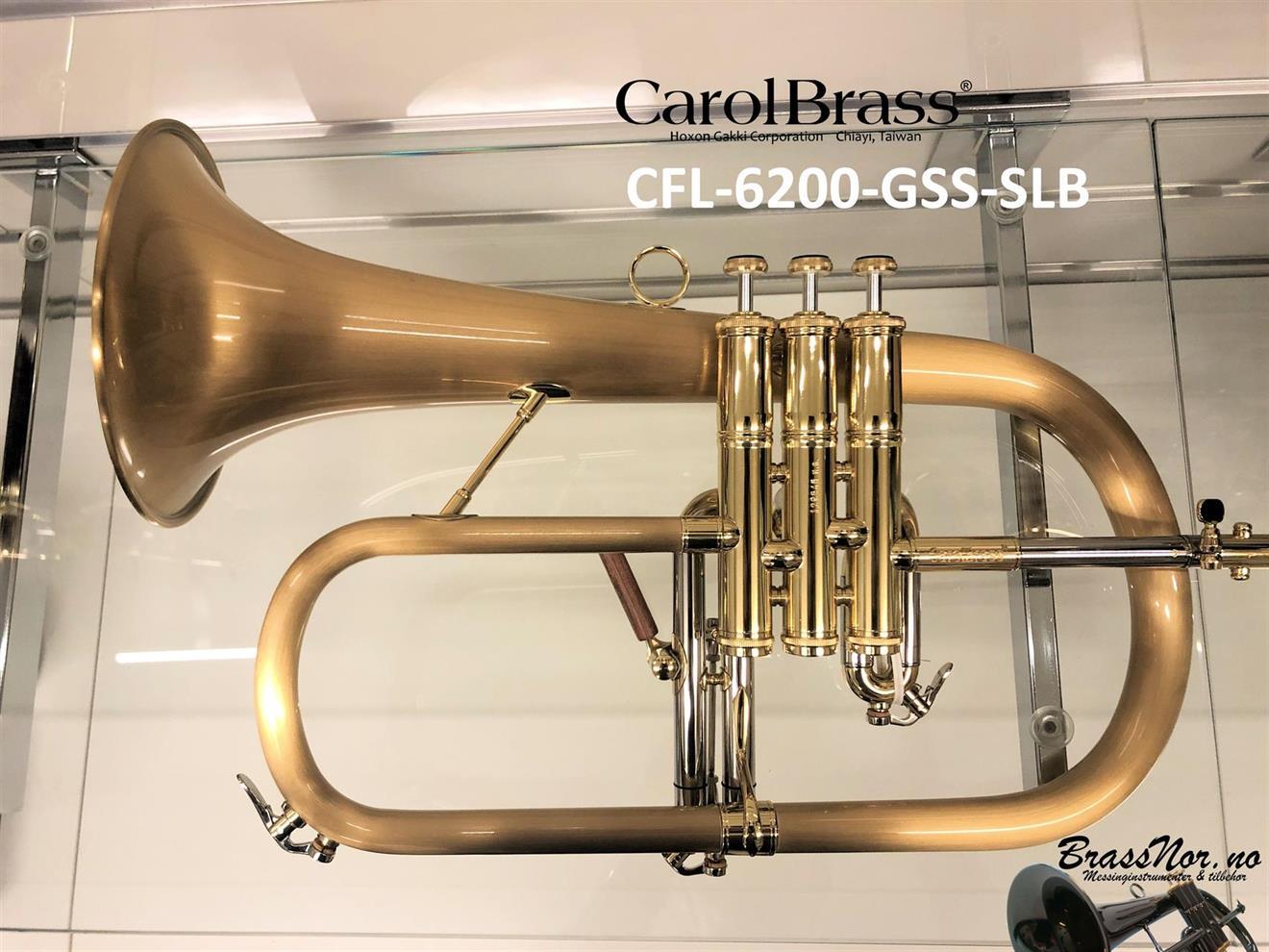 Bb flugel CFL-6200-GSS(SLB)