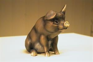 Sitjande gris, farga