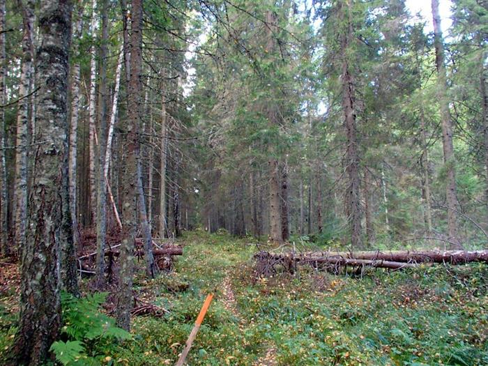 Upplandsleden etapp 14 Västland - Marma 19,7 km