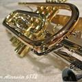 BrassNor Alexander 6882-SLB-PIB-L