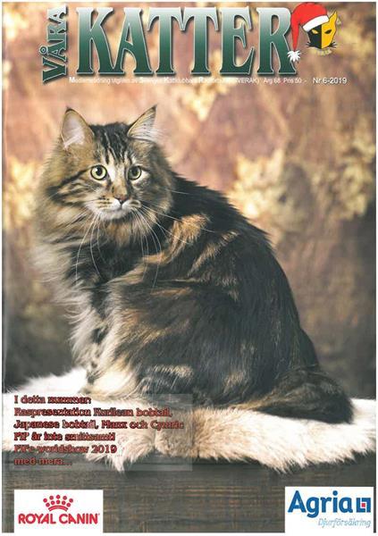 Våra Katter 2019-06