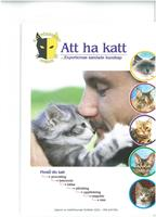 Att ha Katt 10-pack (inkl.frakt)