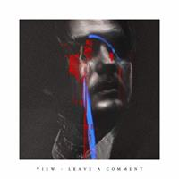 VIEW: LEAVE A COMMENT LP