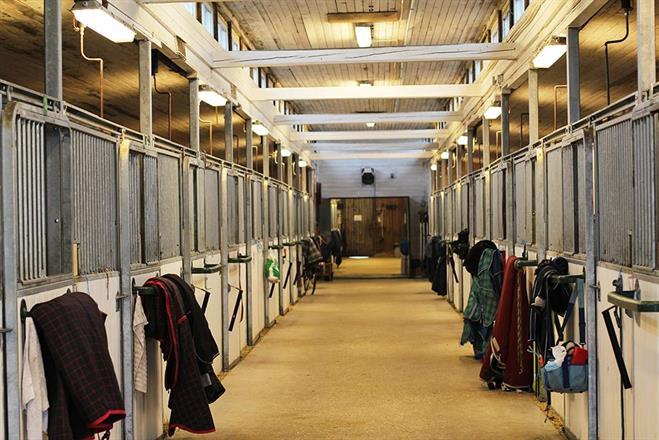 Stor og lys stall. Bokser til 30 hester.