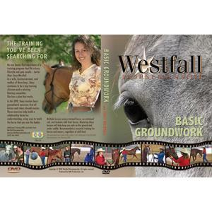 BASIC GROUND WORK DVD