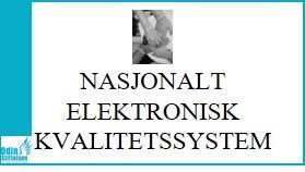 Nasjonalt e-kvalitetssystem