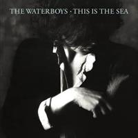 WATERBOYS: THIS IS THE SEA-COLLECTOR'S EDITION 2CD