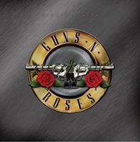 GUNS N' ROSES: GREATEST HITS 2LP