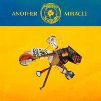 STEVE 'N' SEAGULLS: ANOTHER MIRACLE LP