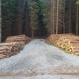Backstick åt skogsbolag så nu ska det gå bra att hämta rundvirket
