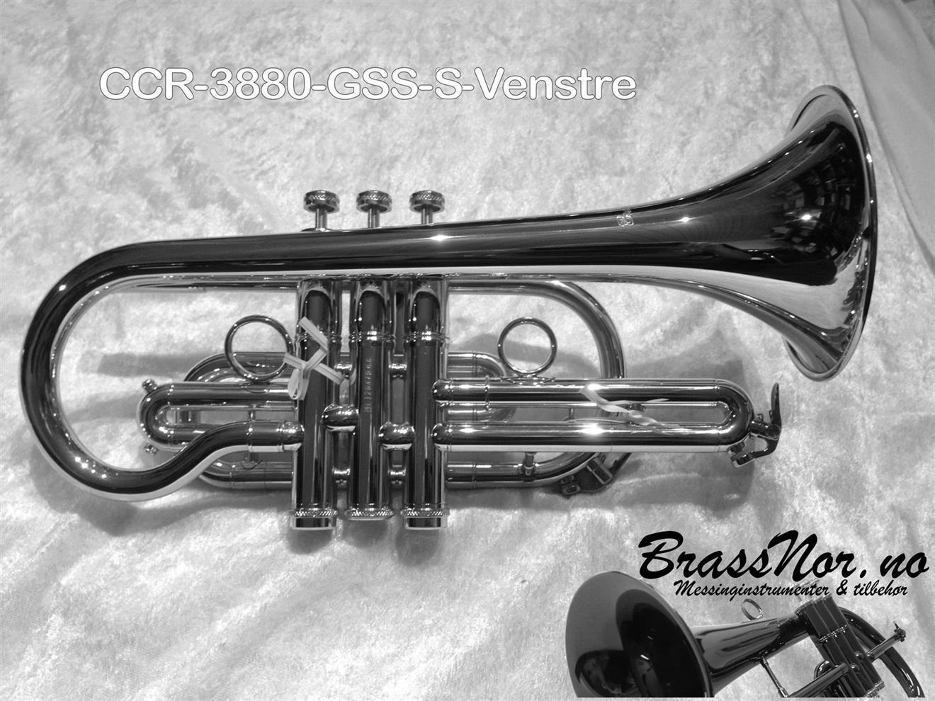 Kornett Bb CCR-3880-GSS venstre forsølvet