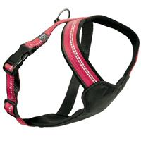 Dog Multi Harness Active cerise M