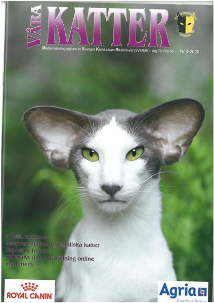 Våra Katter 2020-04