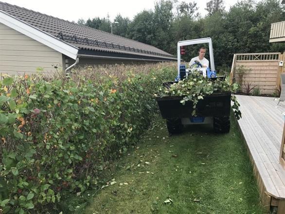 Fjerning av hageavfall med hjullaster er effektivt
