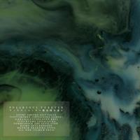 DJ POLARSOUL: FOREVER LP