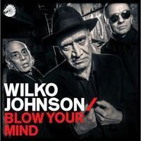 JOHNSON WILKO: BLOW YOUR MIND LP