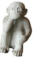 Monkey Not Talk