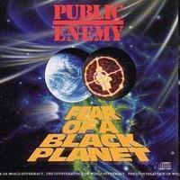 PUBLIC ENEMY: FEAR OF A BLACK PLANET LP