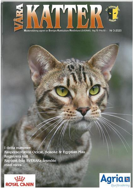 Våra Katter 2020-03
