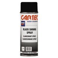 Black Shining Spray 400 ml - Musta kiiltävä spray
