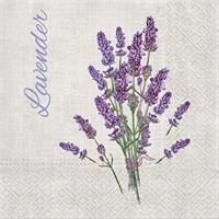 Lavender For You