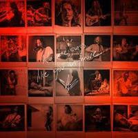 CORNELL CHRIS: NO ONE SINGS LIKE YOU ANYNOMRE LP