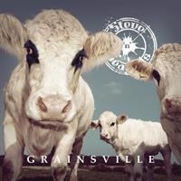 STEVE 'N' SEAGULLS: GRAINSVILLE LP + BONUS TRACK