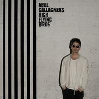 GALLAGHER NOEL'S HIGH FLYING BIRDS: CHASING YESTERDAY