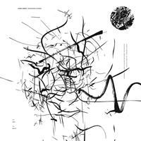 TURNER AARON: REPRESSION'S BLOSSOM LP