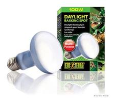 Daylight Basking Spot, 100 watt