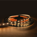 LED-Strip (5 meter) 4,8W/M Varmvit IP65 24V
