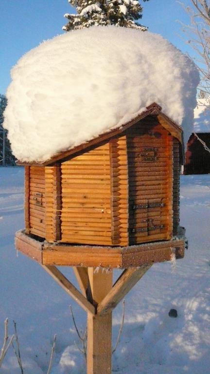 Snyggaste hemmabyggda fågelstugan?