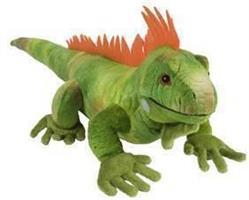 Grön Leguan, 60cm