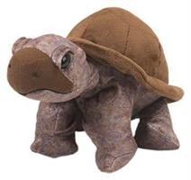 Landsköldpadda, 30cm
