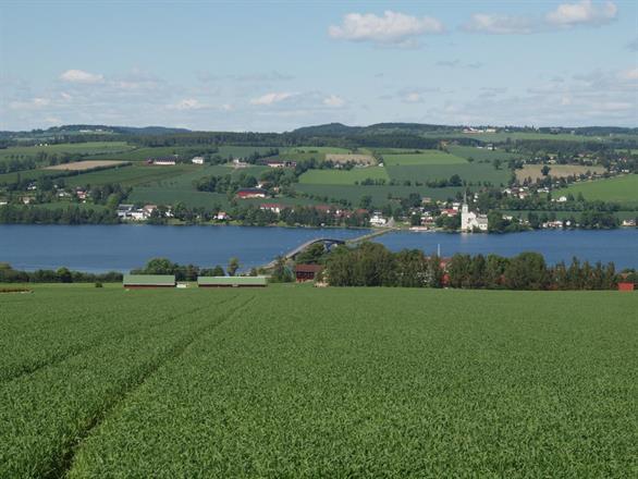 En sommerdag med utsikt fra Helgøya mot Tingnes