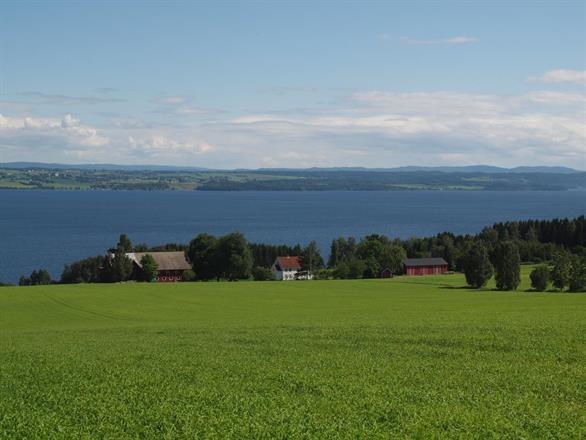 Vien Nedre på Helgøya, utsikt mot Stange