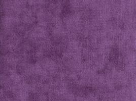 Eros Violet