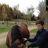 Kan vara väldigt jobbigt att få med hästarna på bra bilder...