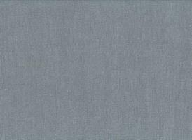 Enzimi Grey