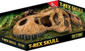 Kranium T-Rex