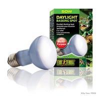 Daylight Basking Spot, 50 watt